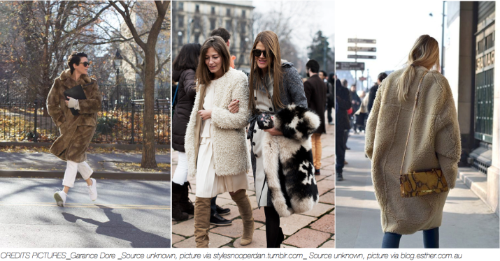 FASHION Trend _ Teddy Bear coat _ abeautifulviewonlife.com _ January 2014_ II