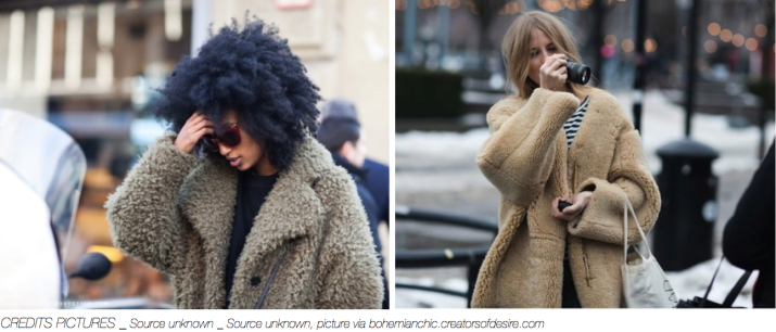 FASHION Trend _ Teddy Bear coat _ abeautifulviewonlife.com _ January 2014_ III